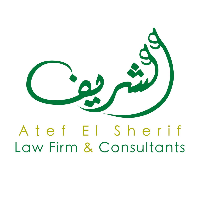 ElSherif Law Firm and Consultants logo