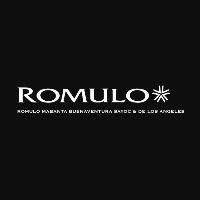 Romulo Mabanta Buenaventura Sayoc & de los Angeles logo